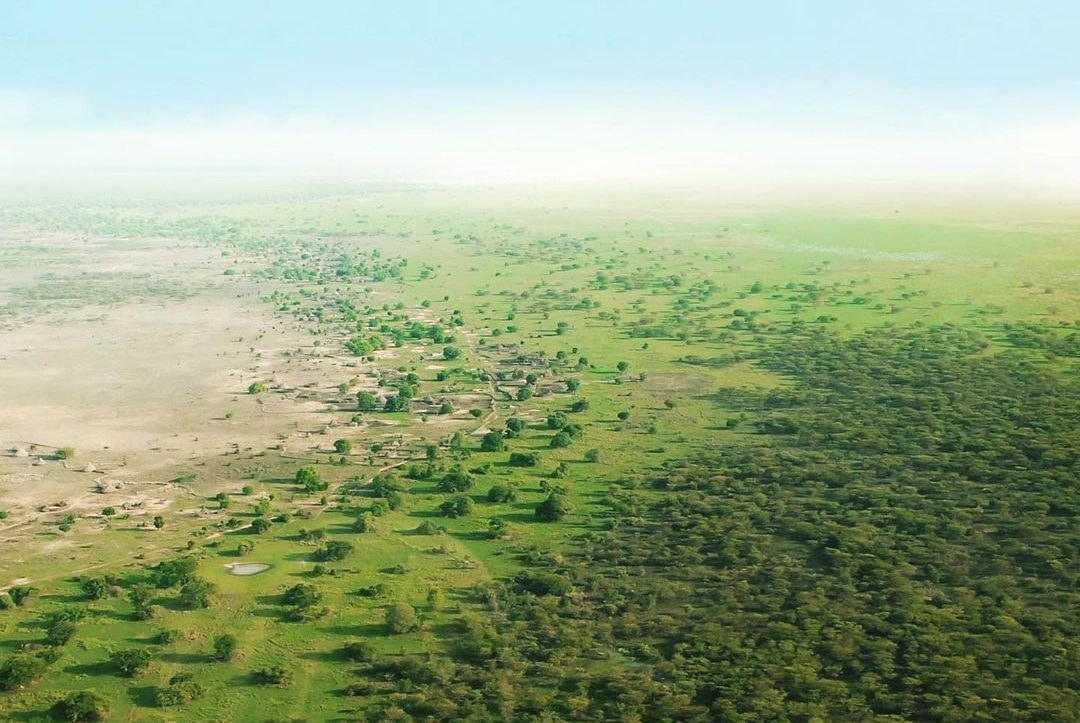 The GreaT Green Wall | Photo: Make Waves Media